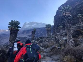 Tanzania trekking Kilimananjaro podejscie