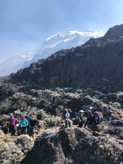 Tanzania trekking Kilimananjaro przystanek