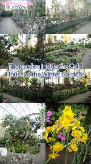 The garden inside the Cold Hosue at the Winter Gardens
