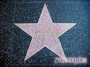 My Hollywood Star