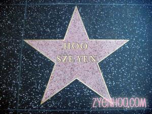 My Hollywood Star