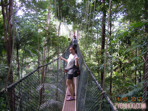 Posing on the Canopy Walkway!