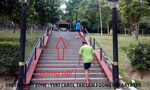 A warning photo posted on their Facebook Page about the steep stairs!