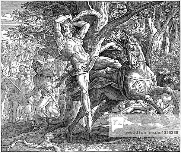Buch Samuel  Absaloms Tod Altes Testament Katholische Bilder Bibel Holzschnitt