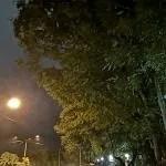 Huawei P20 Pro Low Light Camera Sample