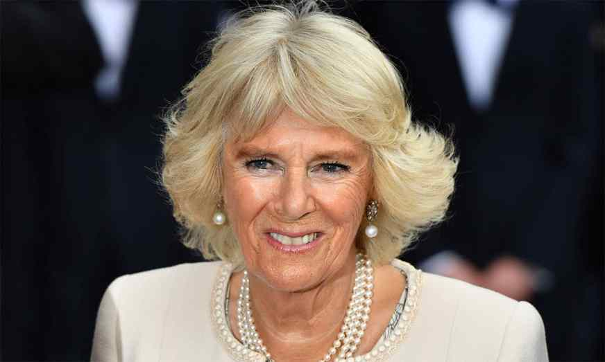Camilla Parker-Bowles looks royally chic rocking office ...