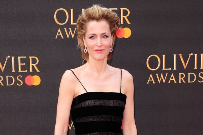 Gillian Anderson Had A Couple Of Mini Breakdowns During Her Career