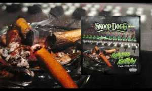 Snoop Dogg - Roaches In My Ashtray mp3 download