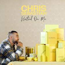 Chris Sebastian – Wasted on Me mp3 download