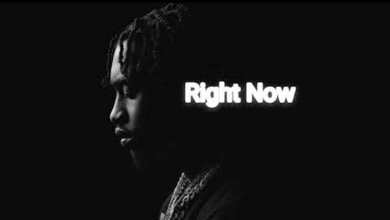 Lil Tjay & Fivio Foreign - Right Now (feat. Kay Flock) mp3 download