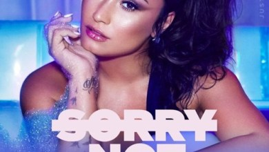 Demi Lovato - Sorry Not Sorry mp3 download