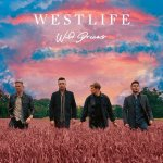 DOWNLOAD MP3: Westlife – Starlight (Official Music) song