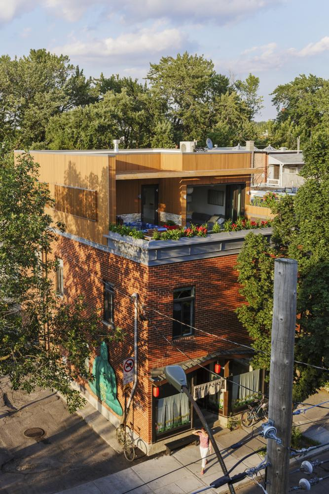 Mentana residence in montreal canada by mu architecture