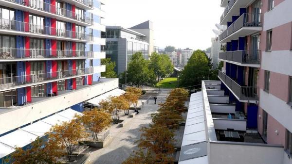 Image Courtesy © UK landscape architects Grant Associates