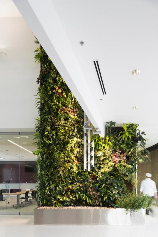A lush, green, two-storey herb garden living wall in the central atrium, Image Courtesy © Remi Carreiro