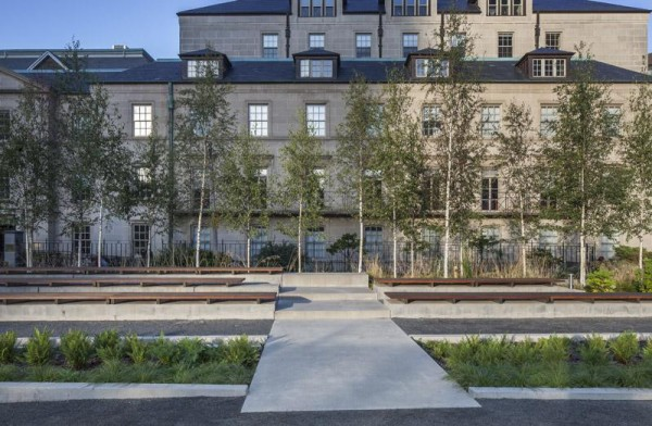 The western planter and birch grove, Image Courtesy © Steven Evans / © PLANT Architect Inc.