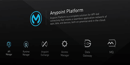 Why MuleSoft Anypoint Plarform is the G2 Crowd iPaaS Leader
