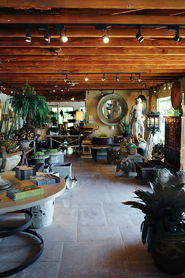 Indoor Outdoor Plants Photos Design Ideas Remodel And