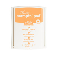 Stampin Up Product 141398