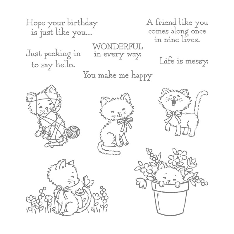 Pretty Kitty Clear Mount Stamp Set By Stampin Up