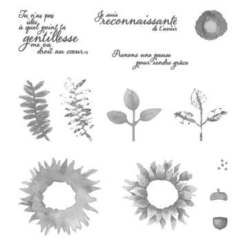 Ensemble de timbres en photopolymère Récolte au pinceau (français)