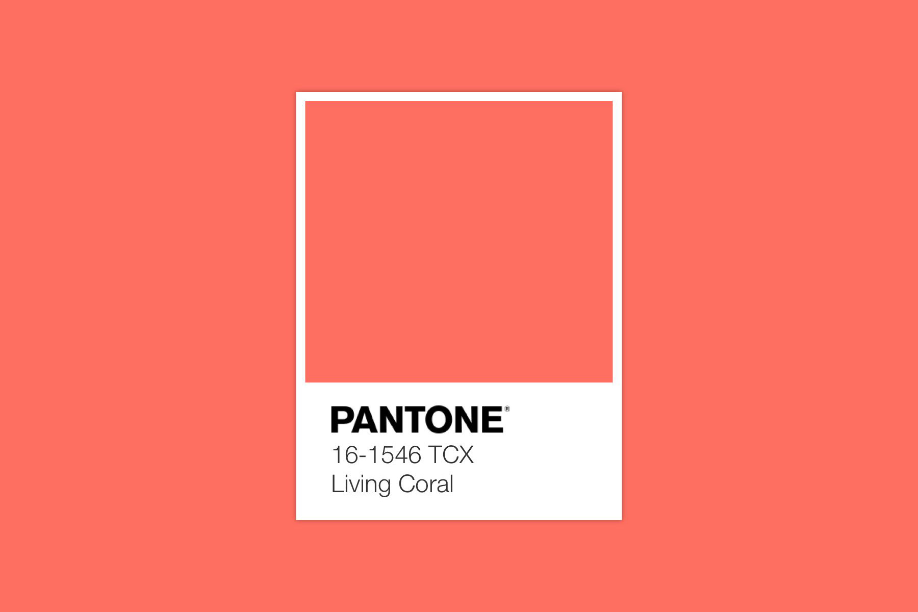 Color Trends Home 2019