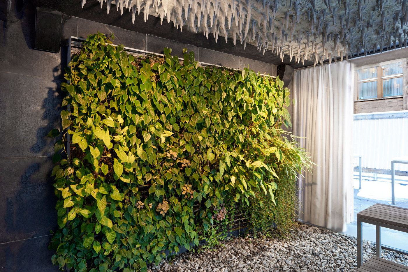 Modern Wall Treatment Photos Design Ideas Remodel And