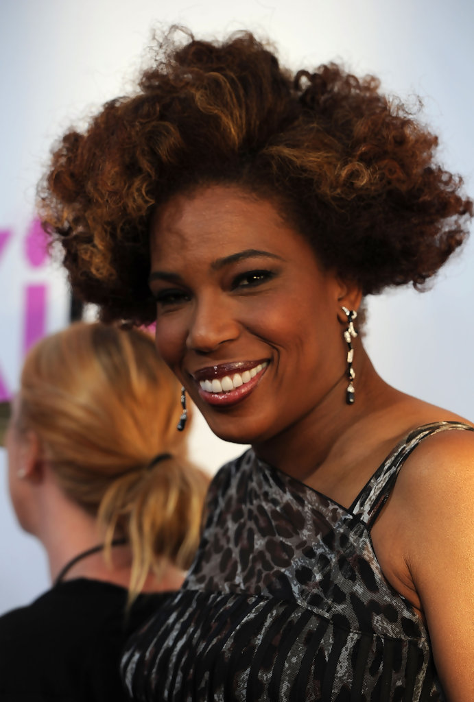 Macy Gray Celebrity Black Hair Styles Pictures StyleBistro