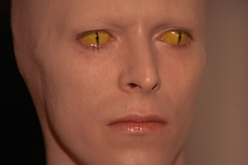 David Bowie made up like an alien with bald head and yellow cat eyes