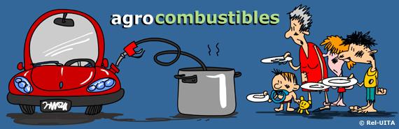 Resultado de imagen para Agrocombustibles