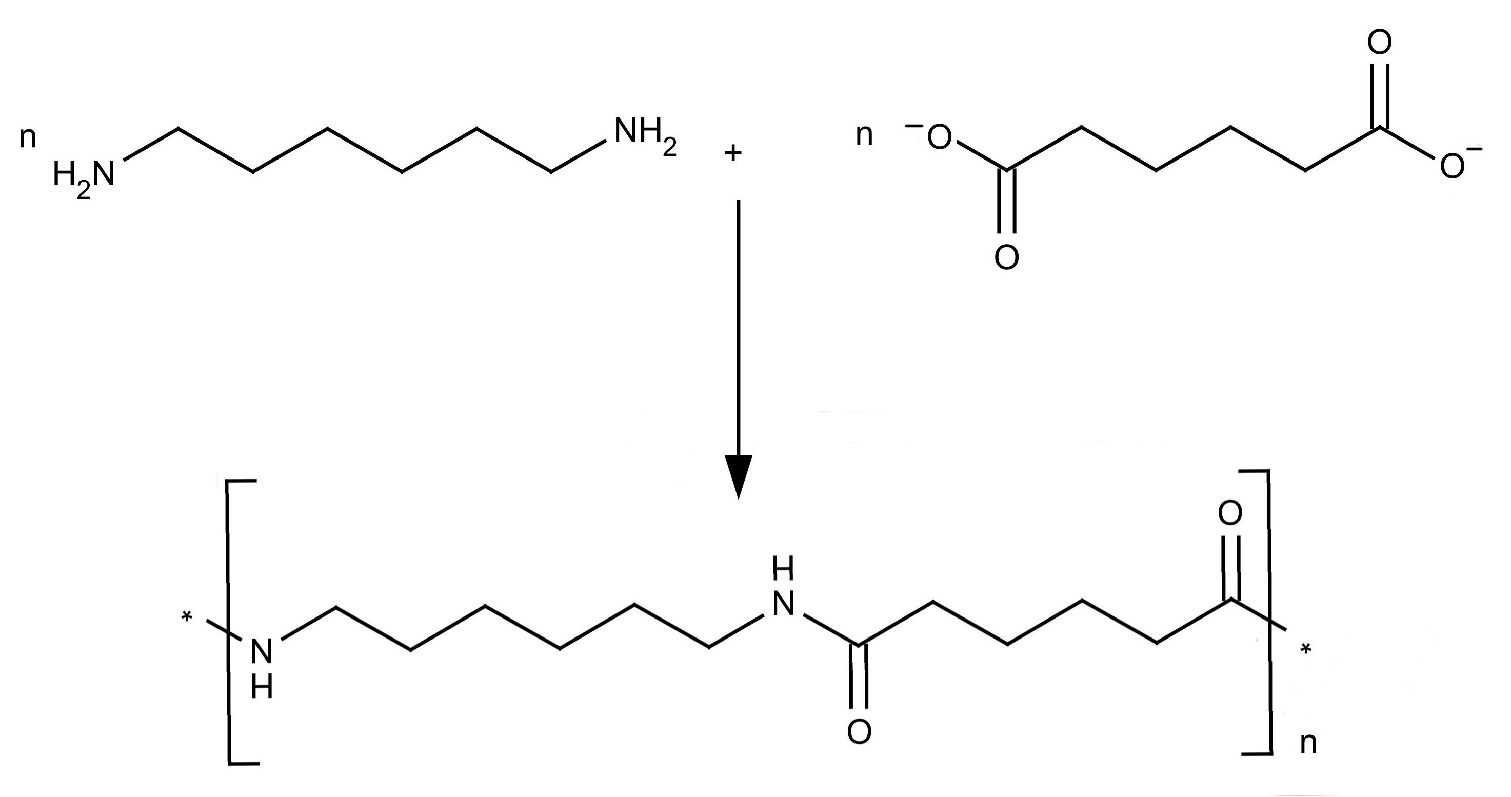 Nylon Monomer Diagram