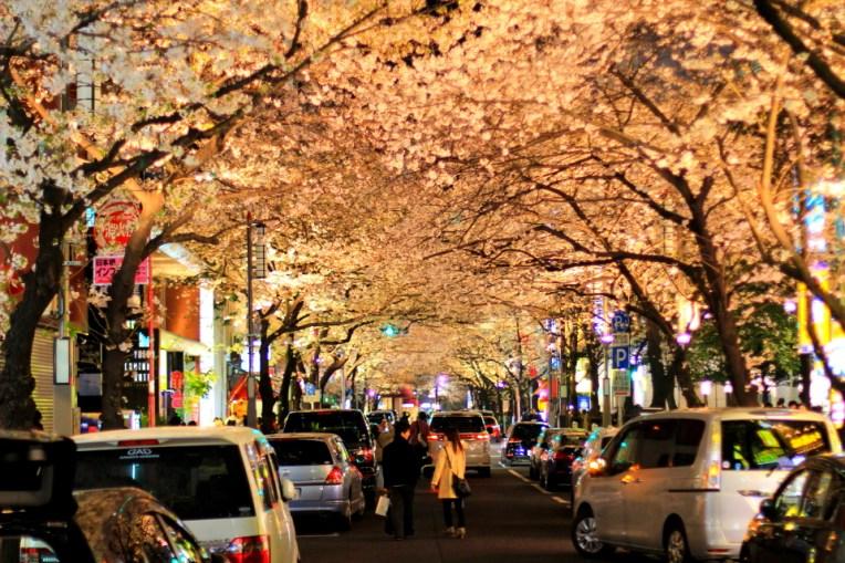 Strada din preajma garii din Tokyo, unde ciresii si-au facut loc printre zgarie nori si lumini orbitoare