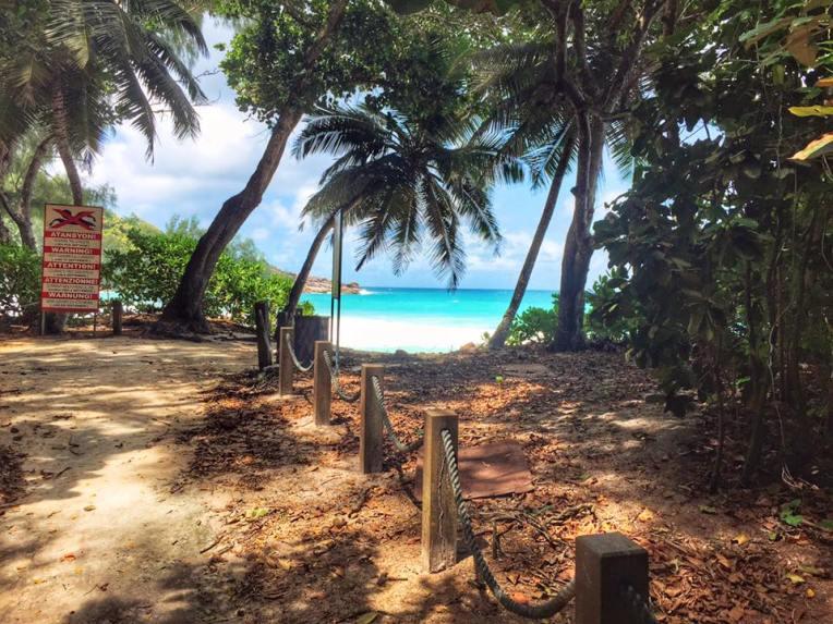 Drumul catre plaja Anse Intendance