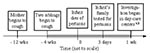 Thumbnail of Timeline of pertussis infection in children in two day-care centers, Israel