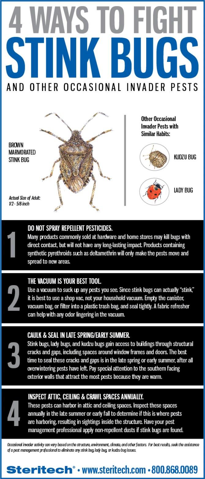 4WaystoFightStinkbugs