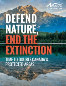 Nature Canada report calls on federal government to double protected areas