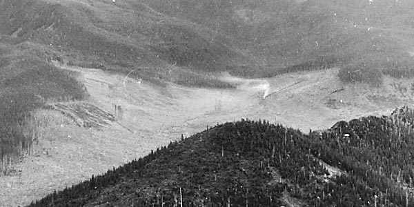 By 1933, railroad logging had nearly cleared the West Fork valley