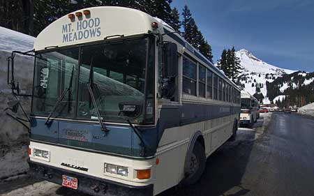 Ski buses at Meadows are lost in the sea of automobiles - a fact that must change in order to reclaim some of the paved areas, and restore sustainability to the resort.