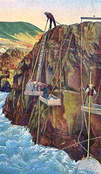 1930s rendering of Indian fisherman working the narrows below Celilo Falls