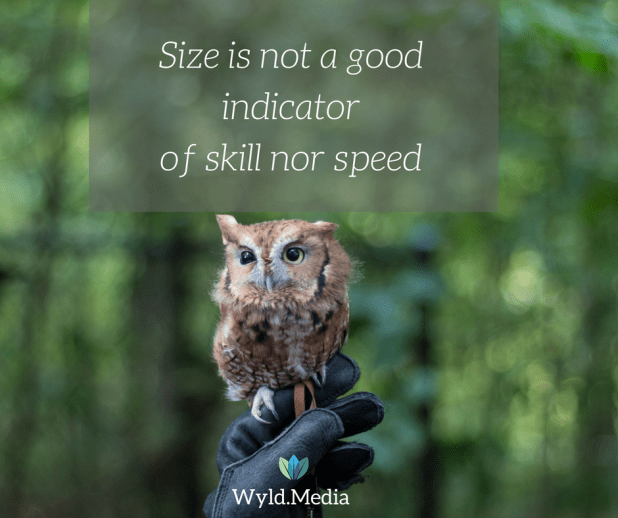 size isn't a good indicator or skill or speed