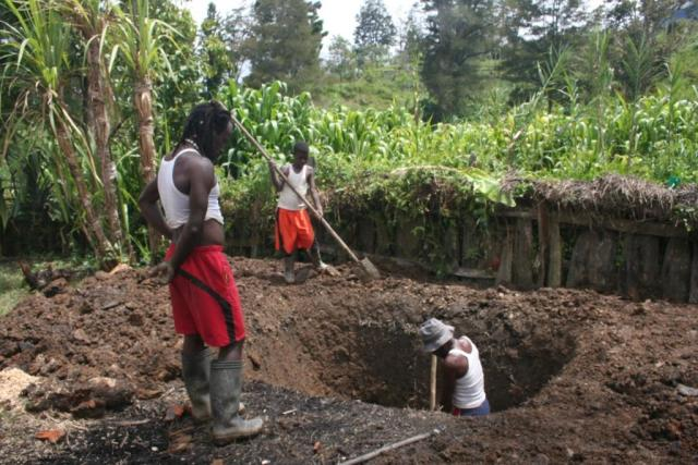 Men digging hole in earth.