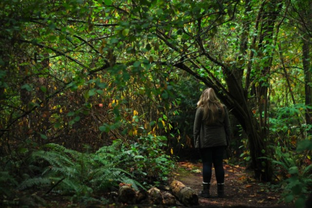 Lady looking at vegetation in forest
