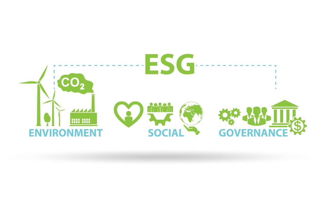 Introduction to Sustainability: It's more than the environment