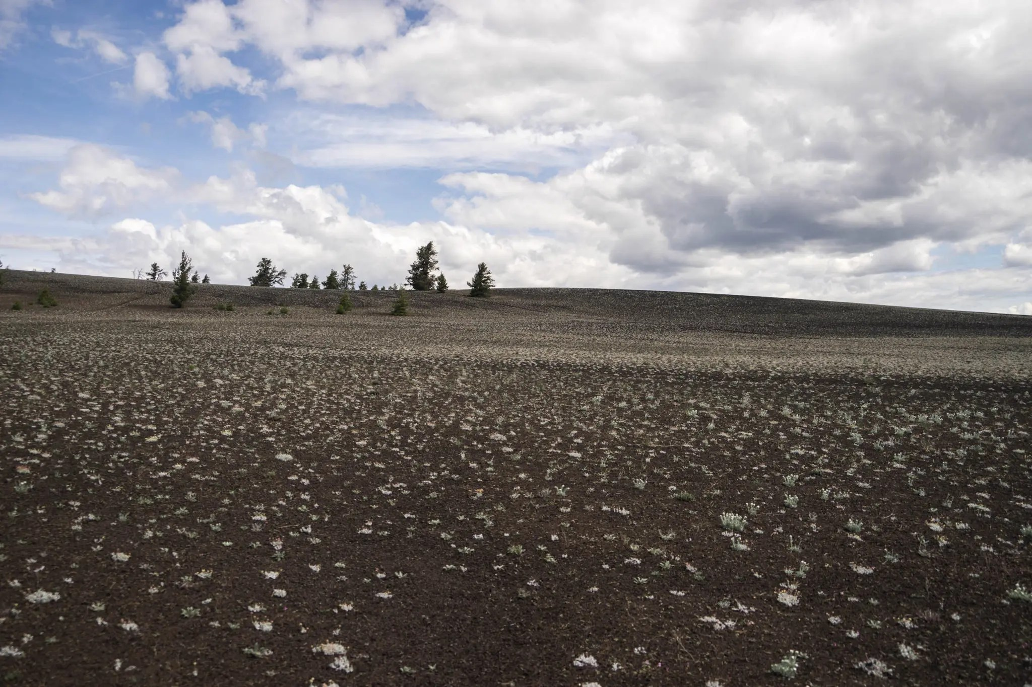 A field of cinder and lava rocks