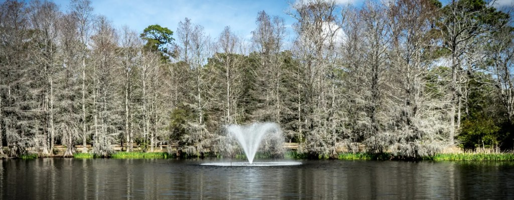 Friday Feature: Brookgreen Gardens