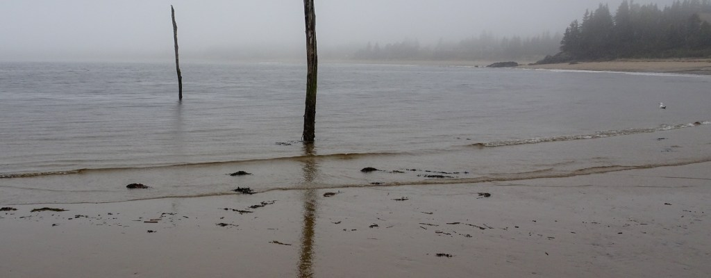 Fundy: Highs and Lows