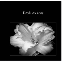 Cover of Daylilies 2017 photo book