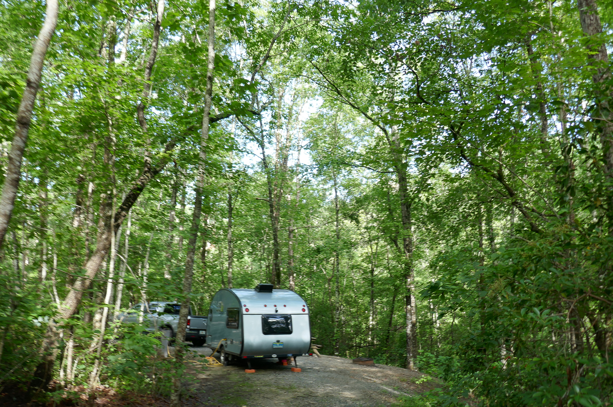 Pickup truck and trailer in campsite