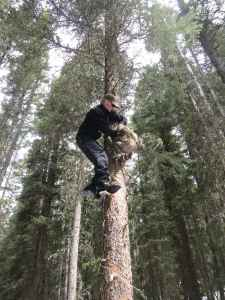 """A member of Wyoming's wolverine research team """"hangs bait"""" in a remote northwest region of the state. (courtesy Meghan Riley)"""