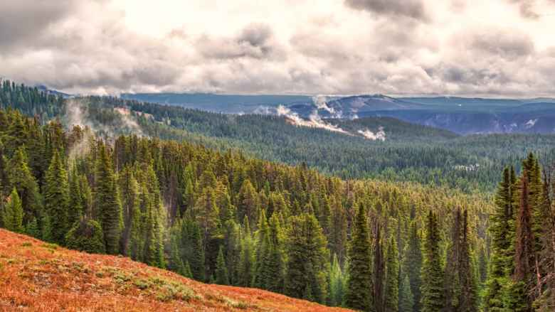 A cloudy morning in Yellowstone National Park. (Flickr Creative Commons photo by John B. Kalla)